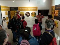 VISITA AL MUSEO VALENCIANO DE LA MIEL