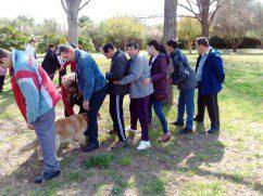 Terapia canina en L'Alquería del Duc